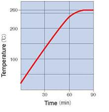 Yamato DVS Oven Temperature Rising Curve